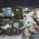 صورة فوتوغرافية لـ L'wzaar Seafood Market
