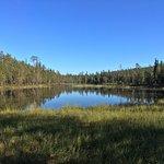 ハイキングコースの途中にある沼です