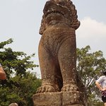 1 of 2 Lions