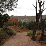 Scenery Along Nature Trail