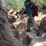 Once we turned left past the end of the trail signs, the trail became steep so wear hiking boots
