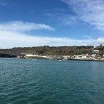Foto de Harry May Boat Trips