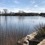 Foto de Coate Water Country Park