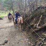 Foto de Sandy Bottom Trail Rides