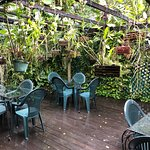 Evita's Italian Restaurant照片