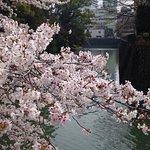 Shizuoka castle resmi