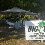 Big Tree Bbq