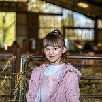 Lambing Sunday