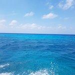 Foto de The Reef Marina
