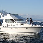 Calypso Boat Tours