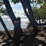 Taipú de Dentro Beach Foto