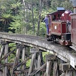 Puffing Billy--wooden trestle bridge