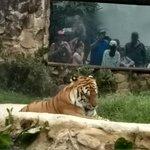 Photo of Zoologico de Cali