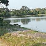 Arugambay Tours ภาพถ่าย