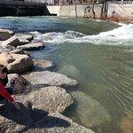 Photo of Truckee River Walk
