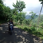 صورة فوتوغرافية لـ Madakaripura Waterfall