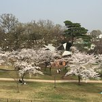 Photo of Sayama Park