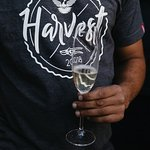 Thelema Harvest 2018