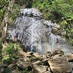 Photo of El Yunque Rain Forest