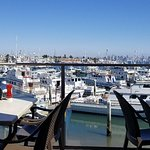 Point Loma Seafoods照片