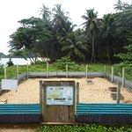 Foto de Praia Jalé