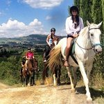 Tours from Florence and Tuscany