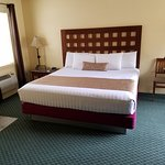 Room 102 - Matisse
