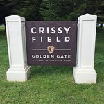 Crissy Field Photo