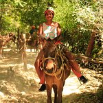 Muleback riding at Canopy River