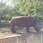 Photo de Parque Zoologico y Botanico Bararida