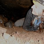 Horne Lake Caves Tour
