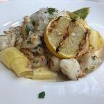 Zocca Cuisine D'Italia