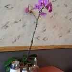 Bild från Rolly's Restaurant