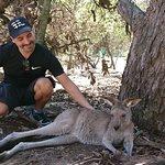 Photo of Australia Walkabout Wildlife Park
