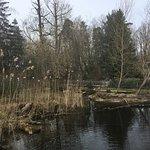 Photo of Wildpark Pforzheim