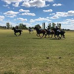 Photo de Argentina Polo Day