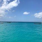 Foto de Barbados Excursions - Catamaran Turtle Snorkeling Tour