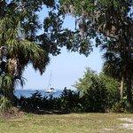 Sailing Kuma Too Picture