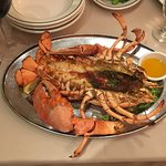 2lb Maine Lobster