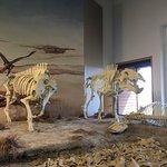 Φωτογραφία: Agate Fossil Beds National Monument