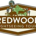 Redwood Sightseeing Tours Company Logo.