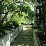 Bild från Rip Van Winkle Gardens