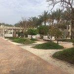 Sentido Reef Oasis Senses Resort – fénykép