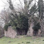 Photo of Rovine Canale Monterano
