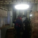 Coonoor High Field Tea Factory on Kotagiri road, after Sim's Park is a good place to learn about