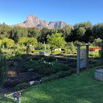 Foto de Boschendal Manor & Winery