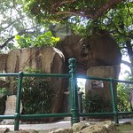 Photo of Camoes Garden and Grotto