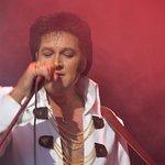 Elvis Tribute Artist - Darren Lee