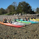 Sea Kayaking Southwest Harbor, Maine