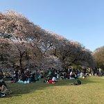ภาพถ่ายของ Kinuta Park